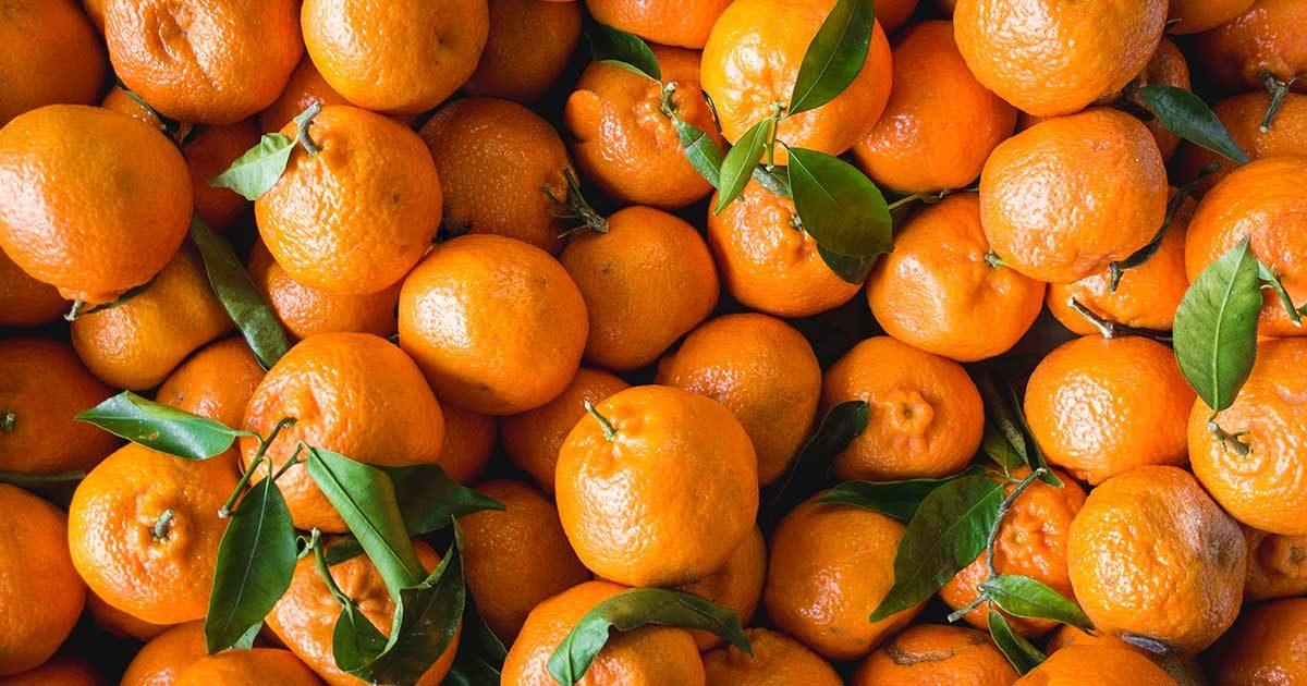 ¿Qué diferencia hay entre mandarina y clementina?